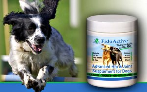 FidoActive Joint Supplement For Dogs