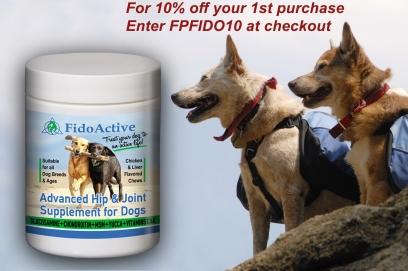 Dogs And Lipomas – FidoActive